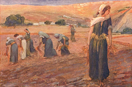 Artwork showing Ruth in a field reaping wheat with other women.  Burnt orange color scheme.